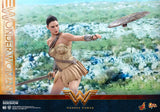 DC Comics Wonder Woman (Training Armor Version) Sixth Scale Figure