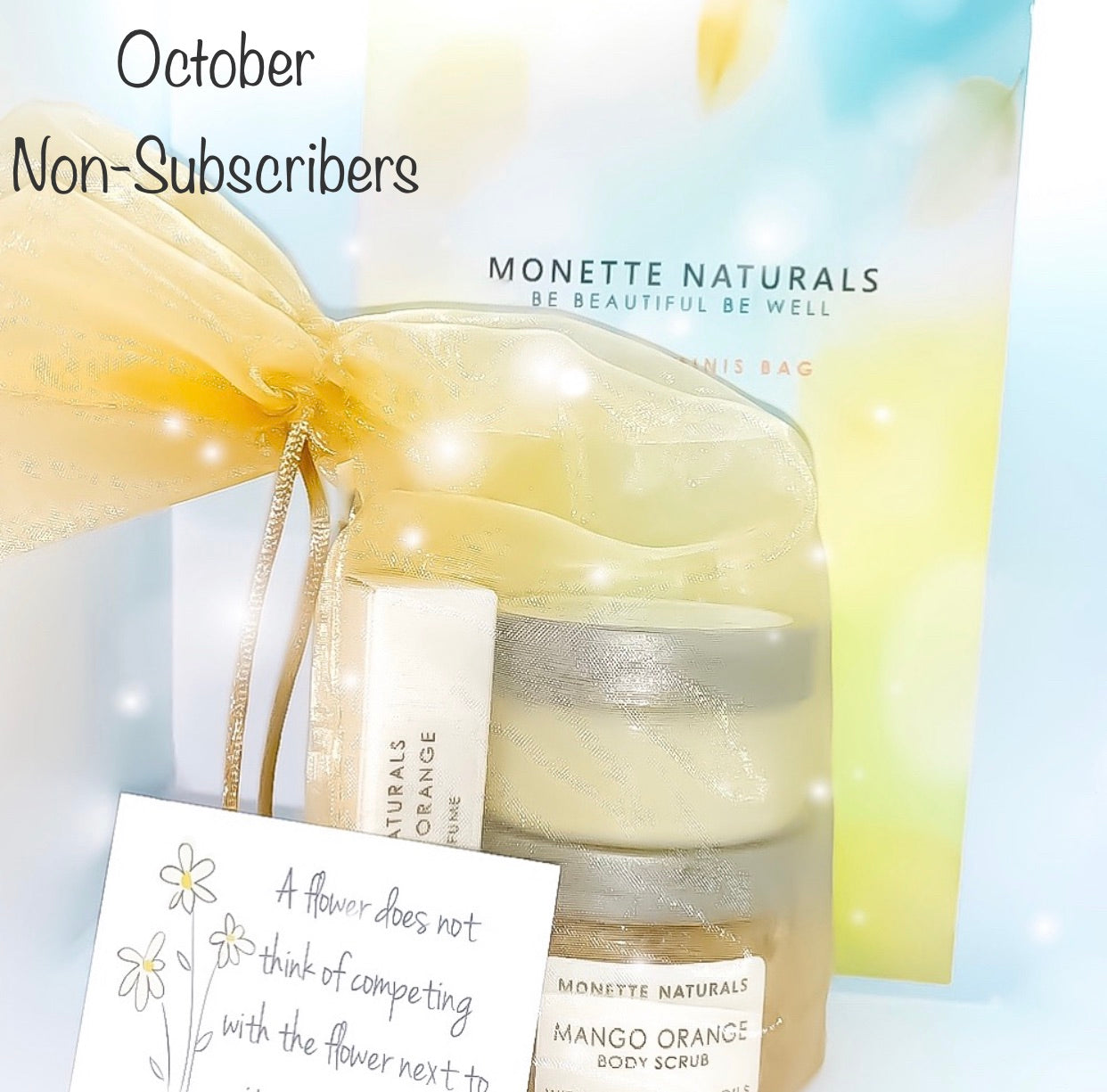 Monette Minis Bag - October (non-subscriber)