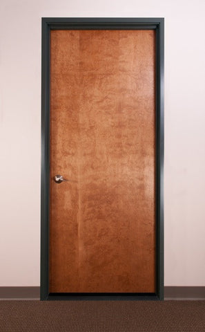Auralex StudioDoor Acoustic Studio Door