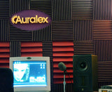 Auralex Studiofoam Wedgies Acoustic Foam