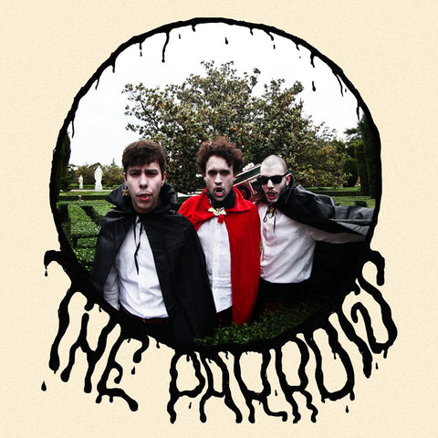 Parrots - Loving You Is Hard 7""