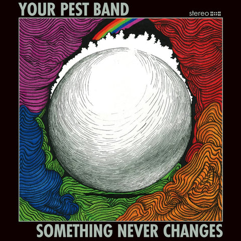 Your Pest Band - Something Never Changes 7""