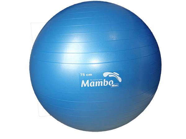 MVS IN MOTION - PELOTA TIPO BOBATH