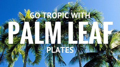 Go Tropic With Palm Leaf Plates