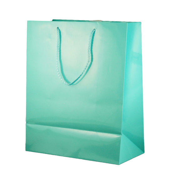 Cindus 223-54 Baby Blue Gift Bag