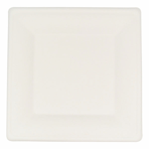 Compostable White Square 10