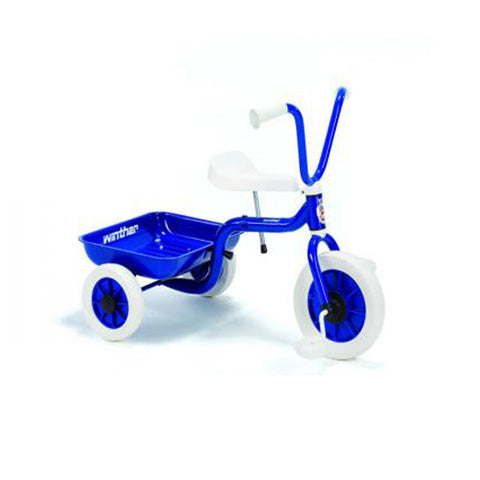 Blue Tricycle