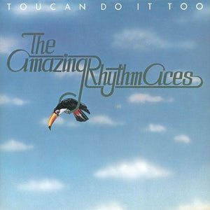 The Amazing Rhythm Aces - Toucan Do It Too (LP, Used) - Used Records - ABC Records at Funky Moose Records
