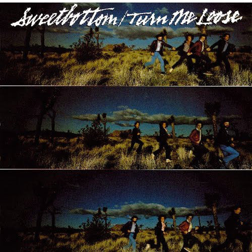 Sweetbottom - Turn Me Loose (LP, Album, Used) - Used Records - Elektra at Funky Moose Records