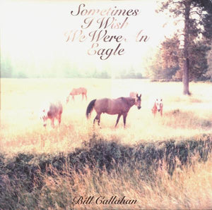 Bill Callahan - Sometimes I Wish We Were An EagleVinyl