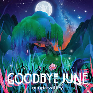 Goodbye June - Magic ValleyVinyl