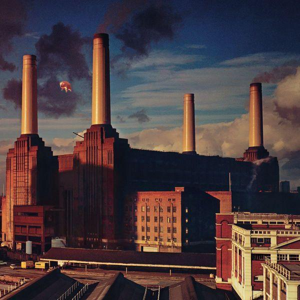 Pink Floyd - Animals (180 gram, Remastered)Vinyl
