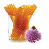 Honey Stix - Clover Blossom 12pk.