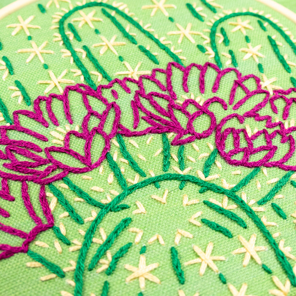 Blooming Cactus Kits Are Now Available!