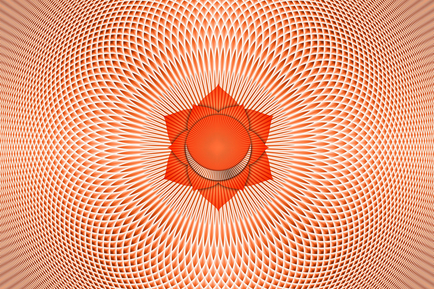 The Sacral Chakra Package
