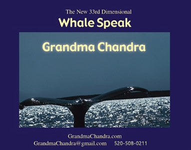 Whale Speak MP3 | Grandma Chandra