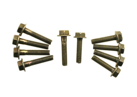 Bolts - M6-1.00 Bolts - Set of 10 for WOLF LUCKY 50 > Part #175GRS50