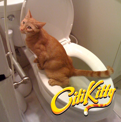 CitiKitty Cat Toilet Training Kit with Extra Training Insert - CitiKitty Inc.   - 6