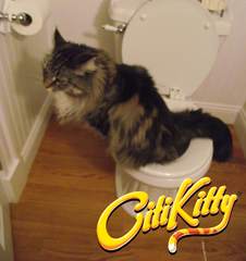 CitiKitty Cat Toilet Training Kit with Extra Training Insert - CitiKitty Inc.   - 5