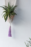 Macrame Plant Hanger with Purple Fringe