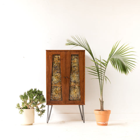 Mid Century Curio Cabinet with Lucite Front