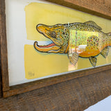 Framed Brown Trout - Hand Screen Printed - Hand Colored