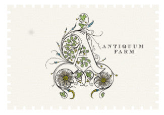 Antiquum Farm Daisy Pinot gris 2015