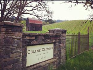 Colene Clemens Highly Rated Pinot Case