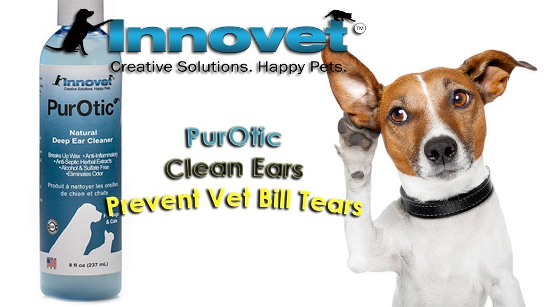 How PurOtic Ear Cleaner is the Easiest and Most Effective Ear Cleaner Amongst the Rest: Let's Find Out How and Why!