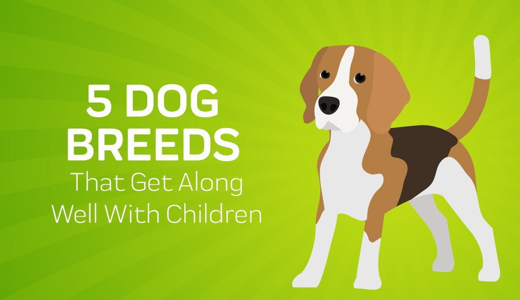 5 Dog Breeds That Get Along Well With Children