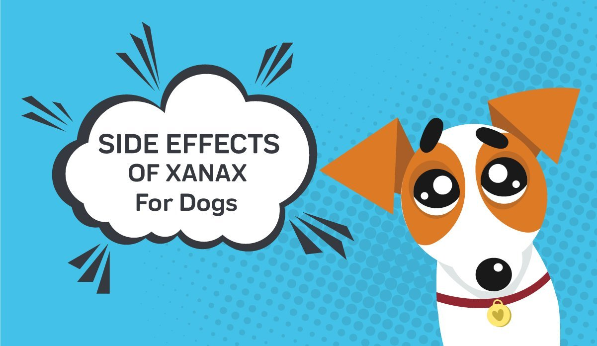 Side Effects Of Xanax For Dogs
