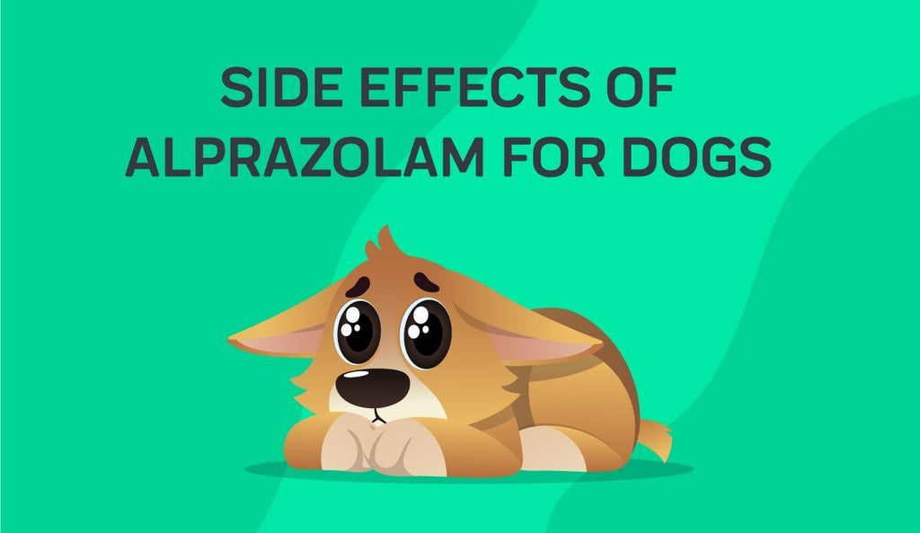 Side Effects Of Alprazolam For Dogs