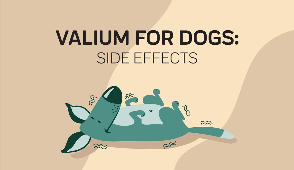 Side Effects Of Valium For Dogs