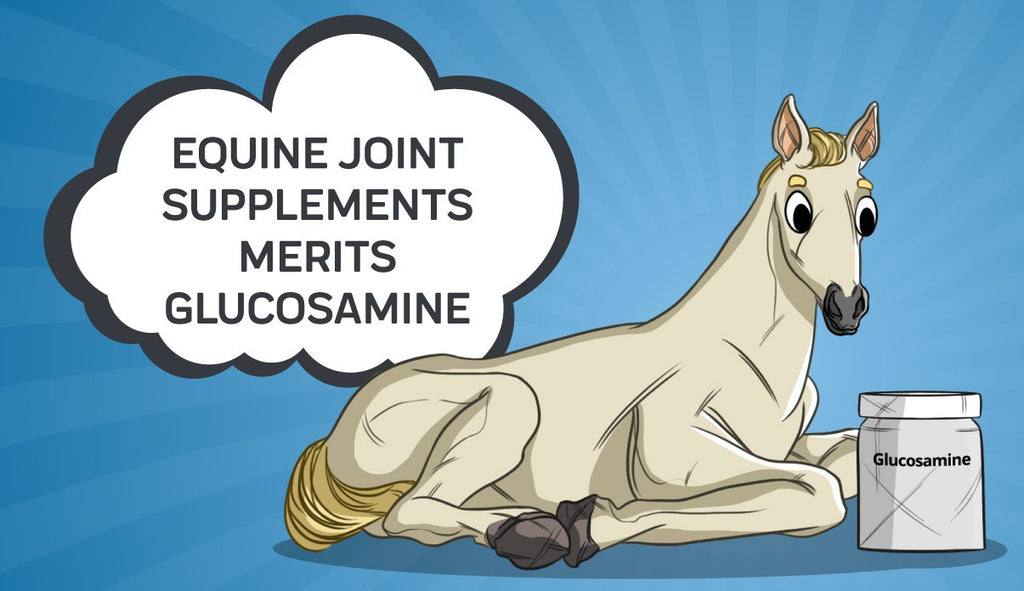 Equine Joint Supplements Merits Glucosamine