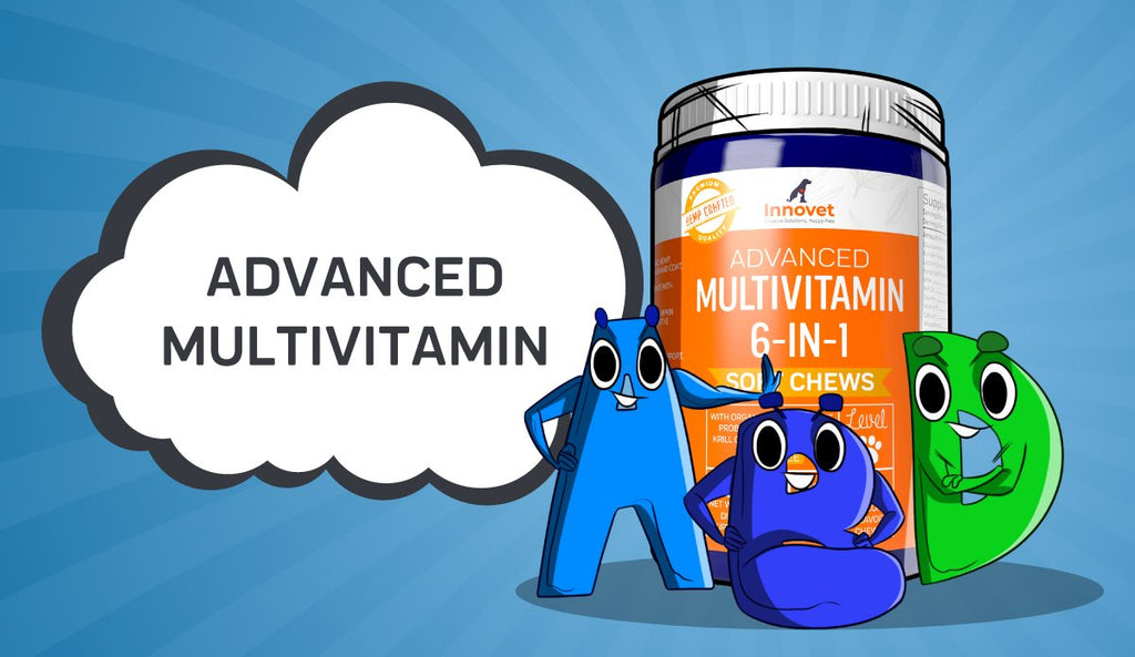 How Gordon Inspired Our Advanced Multivitamin Chews