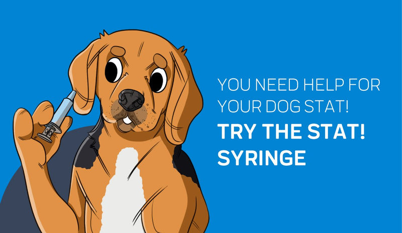 Why We Created the STAT! Syringe for Dog Emergencies
