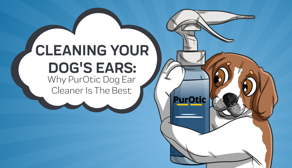 Cleaning Your Dog's Ears - Why PurOtic Dog Ear Cleaner Is The Best