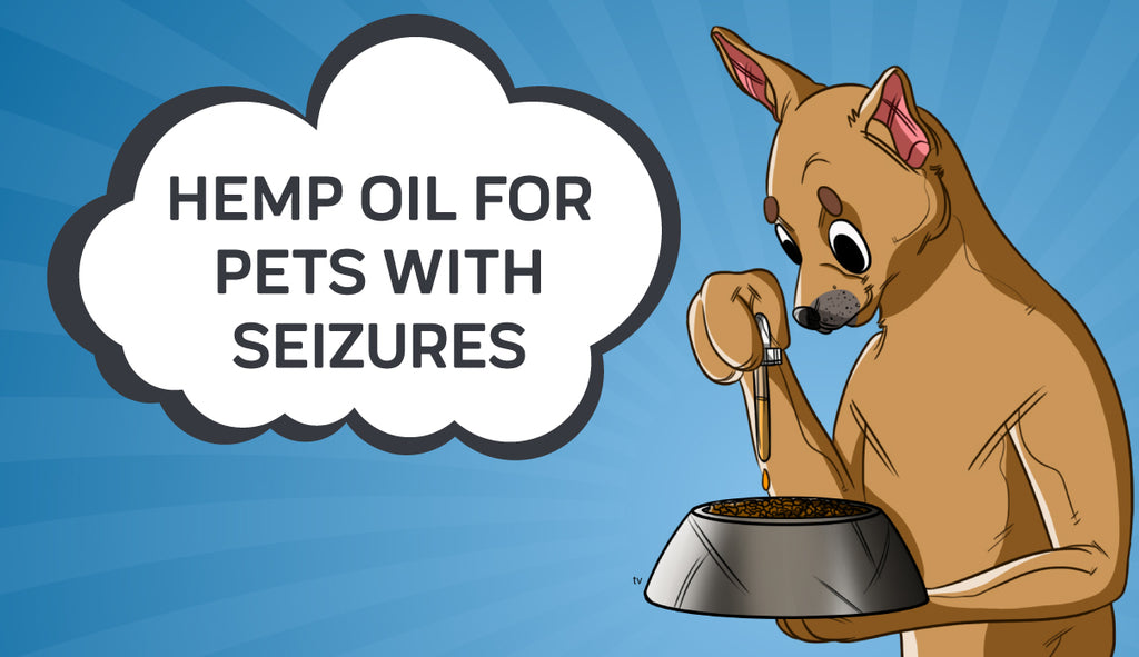 Hemp Oil for Pets With Seizures