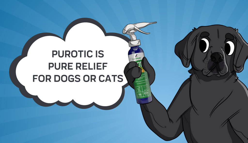 Why We Created PurOtic Natural Ear Cleaner
