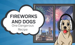 Fireworks And Dogs: One Dangerous Recipe
