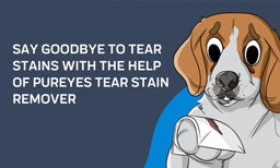 Say Goodbye to Tear Stains with the Help of PurEyes Tear Stain Remover