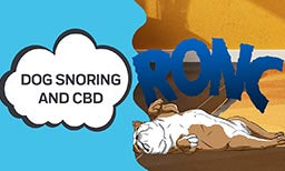 how to stop dog snoring and how cbd can help