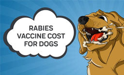 Rabies and How Much does the Rabies Vaccine Cost for Dogs