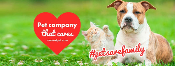 Pet company that cares