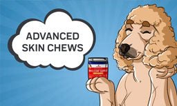 The Potential Benefits for Innovet's Advanced Skin & Coat Support Chews