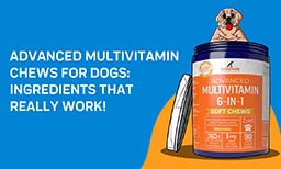 Advanced Multivitamin Chews For Dogs: Ingredients That Really Work!