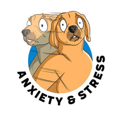 CBD for Anxiety & Stress in Dogs Scientific Research and Clinical Trials