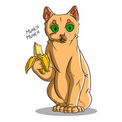 Can Cats Eat Bananas? | Innovet Pet