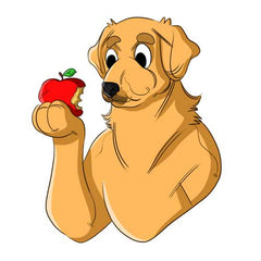 Can Dogs Eat Apples? | Innovet Pet
