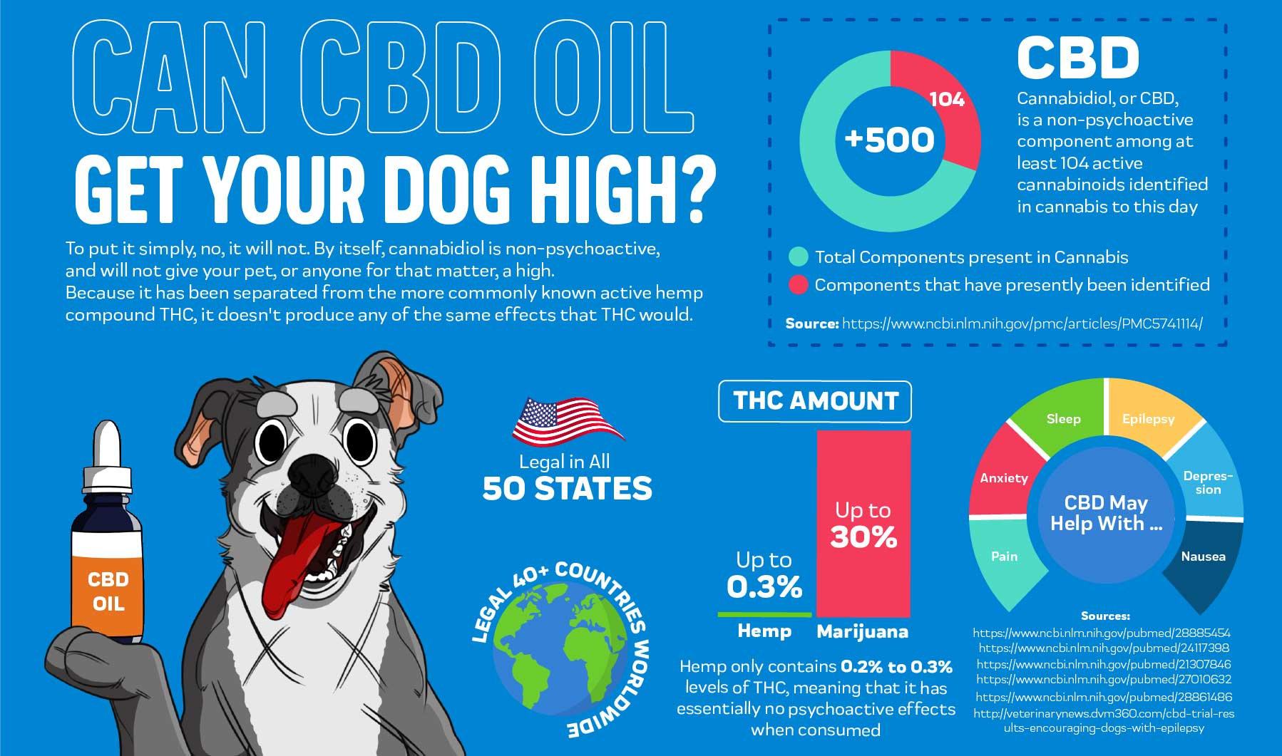 Can CBD Oil Get your Dog High